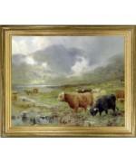Scottish Highland  Framed Picture - Irish