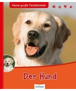TEMPORARILY OUT OF STOCK - Der Hund