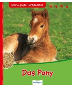 TEMPORARILY OUT OF STOCK - Das Pony