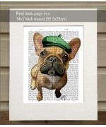 Brown French Bulldog with Green Hat FabFunky Book Print