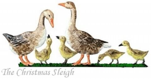 Gray Goose Family Wilhelm Schweizer