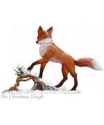Wilhelm Schweizer  Winter Fox Papa