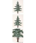 Winter Pine Tree  Standing Pewter Wilhelm Schweizer