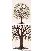 Spring Chestnut Tree Standing Pewter Wilhelm Schewizer