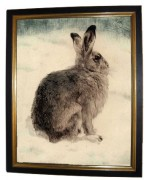 TEMPORARILY OUT OF STOCK - 'Hare'
