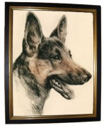 TEMPORARILY OUT OF STOCK  'German Shepherd'
