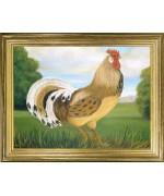 Golden Cockerel'