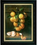 Branch of Oranges'