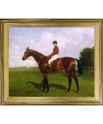 Racehorse Diamond Jubilee'