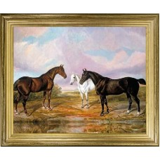 Horses in a Meadow'
