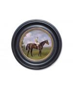 Racehorse 'Rocksand'